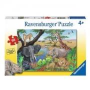 Пъзел Ravensburger 60 части - Сафари животни, 7009600