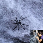 Dazzling Toys Realistic Halloween Spider Webs & Webbing + Spiders 12 Pack (D250)