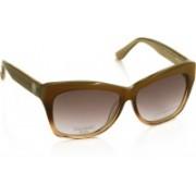 Harley Davidson Wayfarer Sunglasses(Brown)