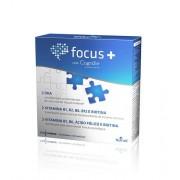 Nutridil Focus + 30