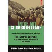 Intre mit si bagatelizare. Despre reconsiderarea critica a trecutului, Ion Gavrila Ogoranu si rezistenta armata anticomunista din Romania (eBook)