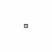 Signature Announcements San-Jacinto-College Marco de Diploma de graduación Profesional/médico con Sello de lámina esculpida, Nombre y Borla, 16 x 16 Pulgadas, Color Dorado Brillante Caoba