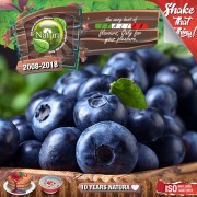 Natura Premium MIX and SHAKE Short Fill 60+40мл - Forest blueberries