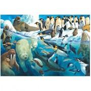 Puzzle Animals Of The Polar Regions, 100 piese