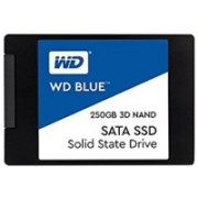 WD Blue 3D 250 GB Laptop Internal Solid State Drive (WDS250G2B0A)