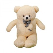Star Enterprises Soft Plush Teddy Bear (5 fit )