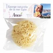 Anaé Esponja natural del Mar Egeo