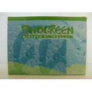 Rinogreen Spray Nasale