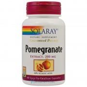 Rodie Pomegranate 60 capsule
