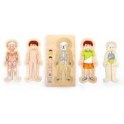 Puzzle - vrstvené lidské tělo chlapec