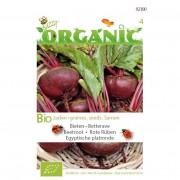 Bio zaden organic bieten egyptische