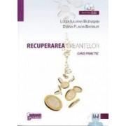 Recuperarea creantelor - contine cd- Luiza Iuliana Budusan