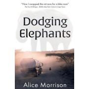 Dodging Elephants: Leaving the Rat Race for a Bike Race - 8000 Miles Across Africa