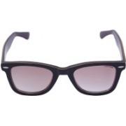 Miami Blues Wayfarer Sunglasses(Violet)