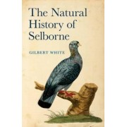 Natural History of Selborne, Hardcover