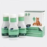 Viyo Recuperation Cat - cutie cu 3 flacoane x 150 ml