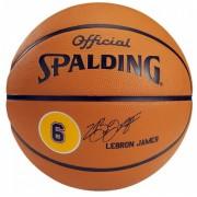 Minge baschet Spalding LeBron James