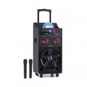 Auna Pro DisGo Box 100, преносима PA система, 50 W RMS, BT, SD слот, LED, USB, батерия, черен (CE-PAS5-0008)