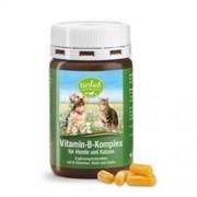 Cebanatural Vitaminas do complexo B para cães e gatos - 120 Cápsulas