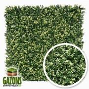 gazons-synthetiques.net Feuillage Artificiel - imitation Buis - 1m x 1m