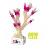 EBI AQUA DELLA CORAL MODULE XL birdnest coral 26x18,5x7,5cm