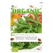 Bio zaden organic rucola wilde meerjarige