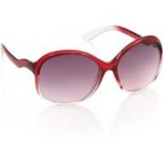 Revlon Over-sized Sunglasses(Violet)