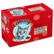 96x100g Catessy falatok szószban nedves macskatáp vegyes csomagban
