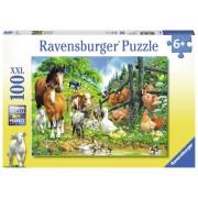 PUZZLE ANIMALE, 100 PIESE - RAVENSBURGER (RVSPC10689)