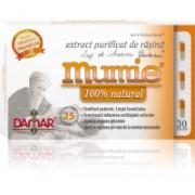 Extract purificat de rasina mumie 100% natural-capsule 30cps DAMAR