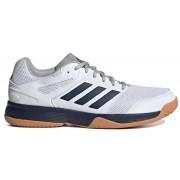 adidas Speedcourt Indoor Schoenen - wit - Size: 48 2/3