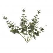Shoppartners 3x Groene Eucalyptus kunsttakken kunstplanten 75 cm