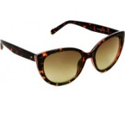 Fossil Cat-eye Sunglasses(Brown)