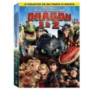 How to train your Dragon 1 & 2 - Cum sa iti dresezi dragonul 1 & 2 (2DVD)