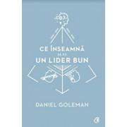 Ce inseamna sa fii un lider bun/Daniel Goleman