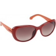 Calvin Klein Oval Sunglasses(Brown)