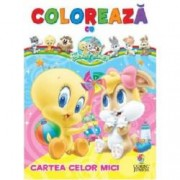 Cartea celor mici Coloreaza cu Baby Looney Tunes