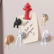 Kikkerland Butt magneten (set van 6) - Honden