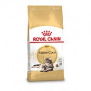Royal Canin Breed Royal Canin Chat Maine Coon 31 Adult 4 kg