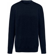 Peter Hahn Pullover aus 100% Premium-Kaschmir Peter Hahn Cashmere blau Herren 48 blau