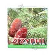 Zizyphi