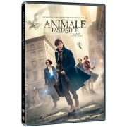Fantastic Beasts and where to find them:Samantha Morton Katherine Waterston Ezra Miller - Animale fantastice si unde le poti gasi (DVD)
