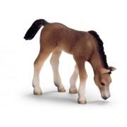 Schleich Arabian Foal Grazing
