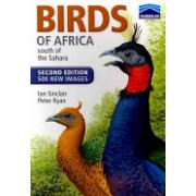 Chamberlain's Birds of Africa South of the Sahara (Sinclair Ian)(Paperback) (9781770076235)