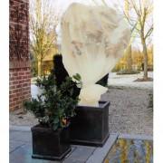 Nature Husă anti-îngheț plante, fleece, bej, 2 x 5 m, 6030094