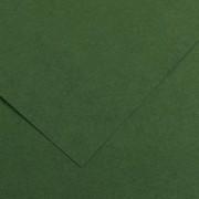 Karton Canson Vivaldi A4 120gr zeleni 31