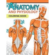 Anatomy and Physiology Coloring Book: 2nd Edtion, Paperback/Dr Jean J. Morgan