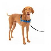 PetSafe Easy Walk Dog Harness, Royal Blue/Navy, Medium