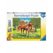 Puzzle Cai Pe Camp, 100 Piese Ravensburger