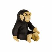Plus cimpanzeu, 14 cm